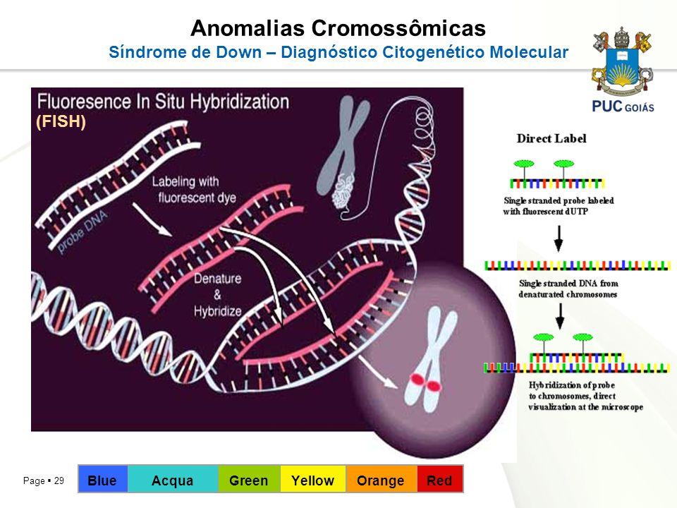 Page 29 Anomalias Cromossômicas Síndrome de Down – Diagnóstico Citogenético Molecular (FISH) BlueAcquaGreenYellowOrangeRed