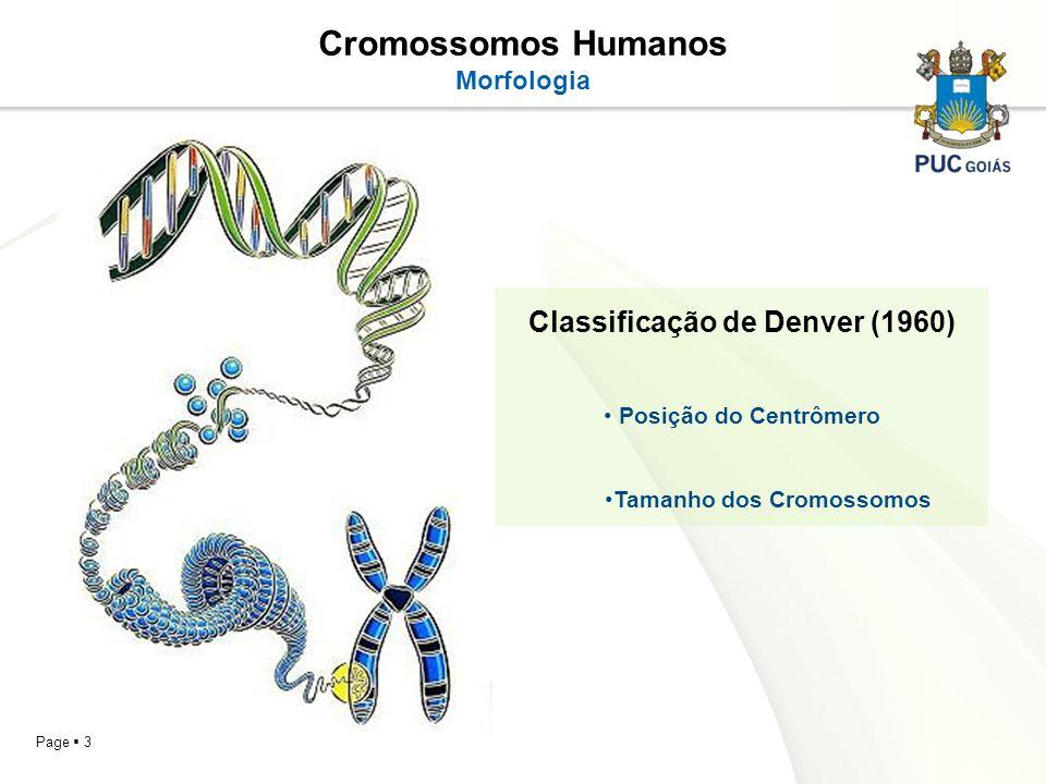 Page 3 Cromossomos Humanos Morfologia Classificação de Denver (1960) Posição do Centrômero Tamanho dos Cromossomos