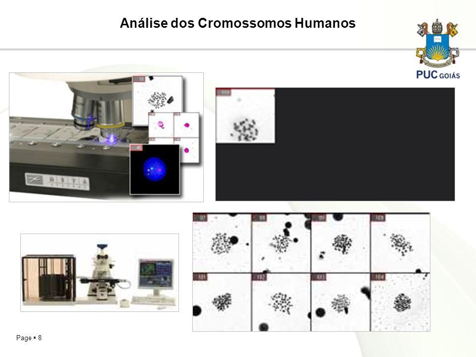 Page 8 Análise dos Cromossomos Humanos