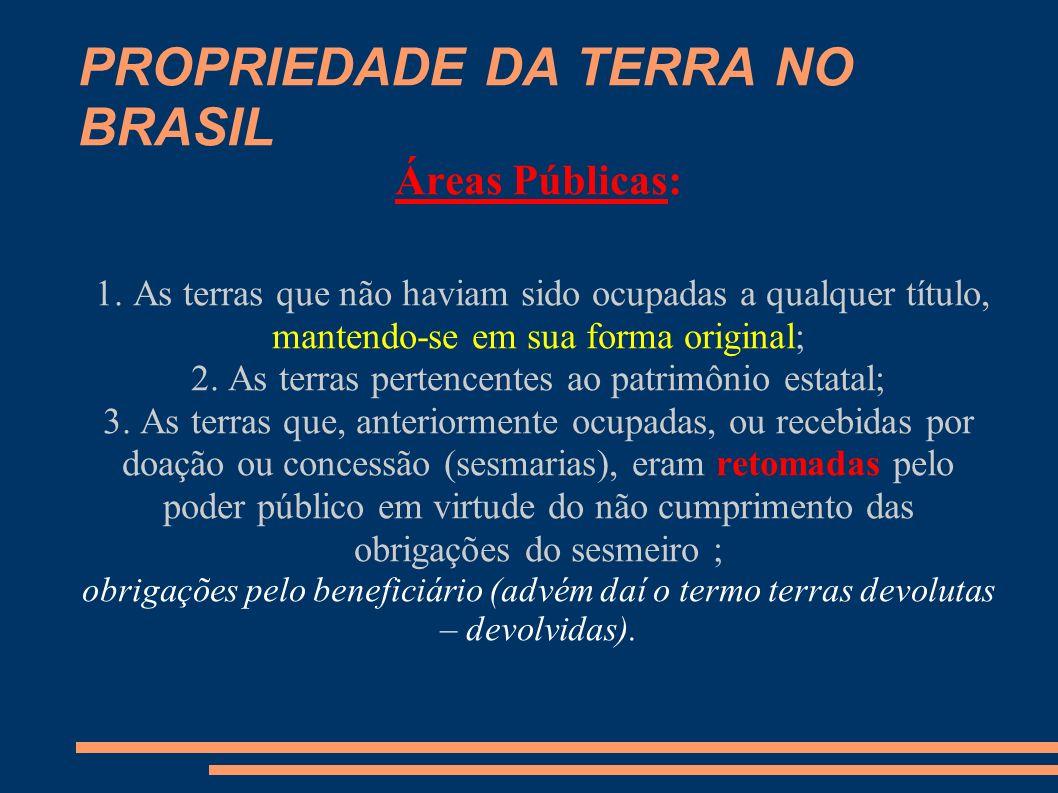 PROPRIEDADE DA TERRA NO BRASIL Importante: Mais tarde a expressão terras devolutas passou a significar também, aquelas terras pertencentes ao poder público todavia não identificadas ou discriminadas