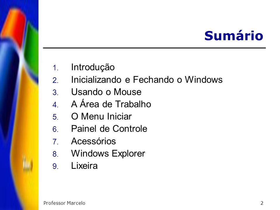 Professor Marcelo2 Sumário 1. Introdução 2. Inicializando e Fechando o Windows 3. Usando o Mouse 4. A Área de Trabalho 5. O Menu Iniciar 6. Painel de