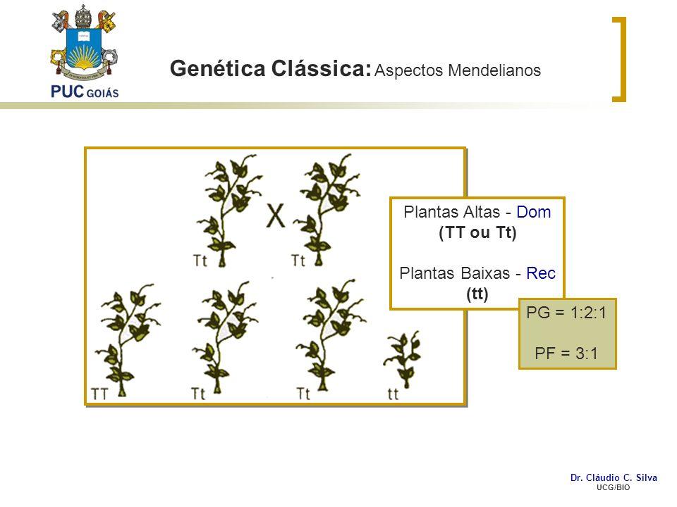 Genética Clássica: Aspectos Mendelianos Plantas Altas - Dom (TT ou Tt) Plantas Baixas - Rec (tt) PG = 1:2:1 PF = 3:1 Dr. Cláudio C. Silva UCG/BIO