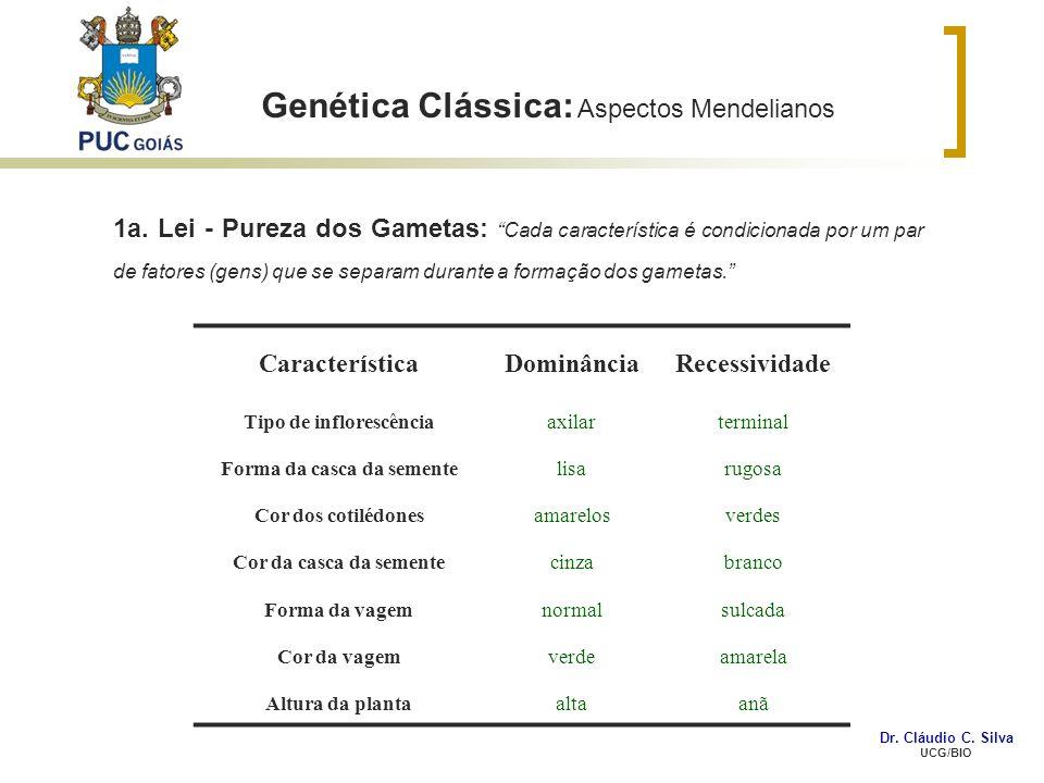 Genética Clássica: Aspectos Mendelianos CaracterísticaDominânciaRecessividade Tipo de inflorescênciaaxilarterminal Forma da casca da sementelisarugosa
