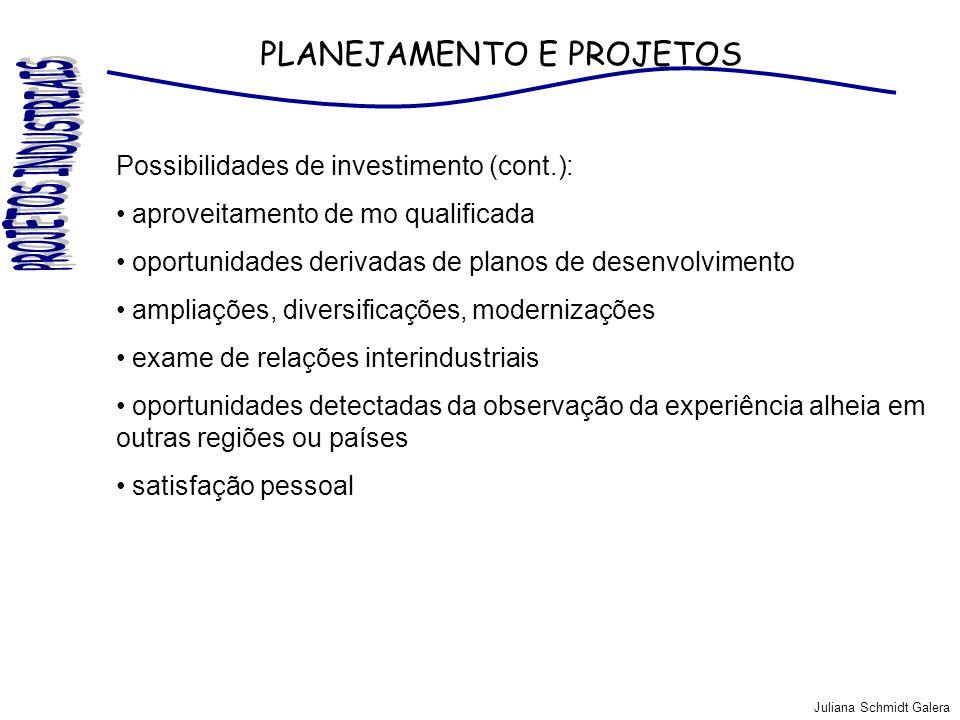 Juliana Schmidt Galera PLANEJAMENTO E PROJETOS Possibilidades de investimento (cont.): aproveitamento de mo qualificada oportunidades derivadas de pla