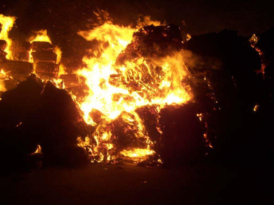 Ramos principais da árvore de decisões de segurança contra incêndio criada pela comissão da NFPA.