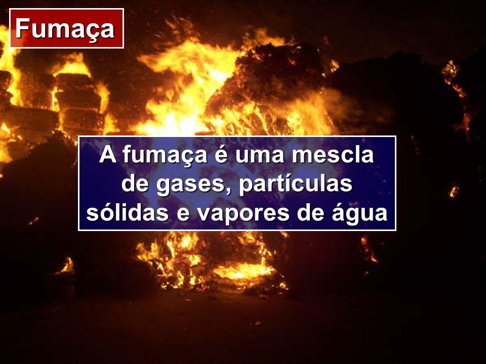 Fumaça A fumaça é uma mescla de gases, partículas sólidas e vapores de água