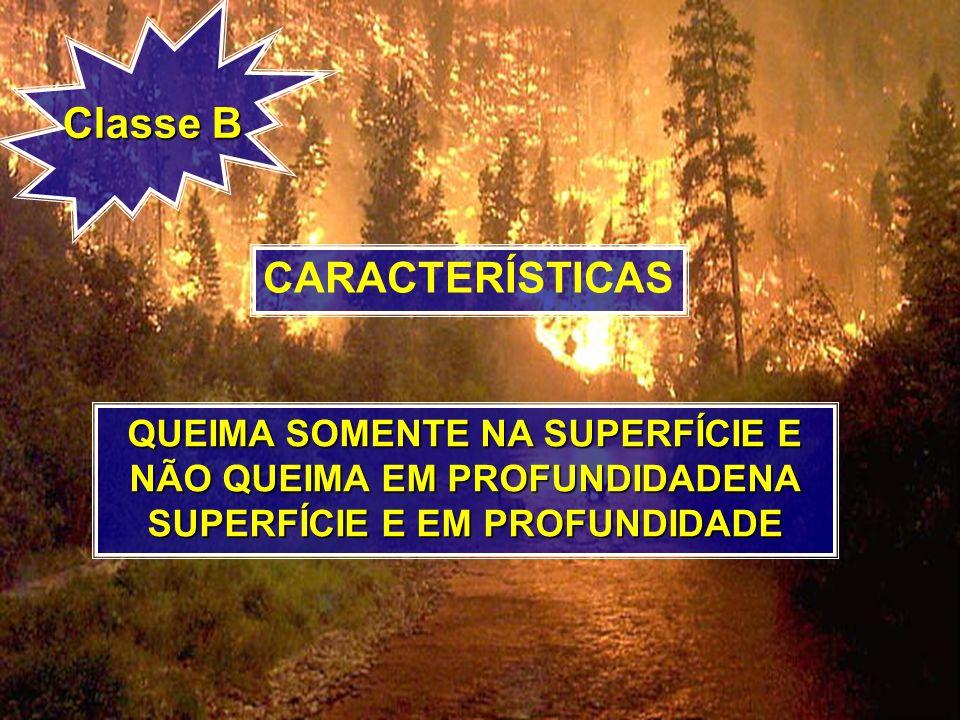 Classe B CARACTERÍSTICAS QUEIMA SOMENTE NA SUPERFÍCIE E NÃO QUEIMA EM PROFUNDIDADENA SUPERFÍCIE E EM PROFUNDIDADE