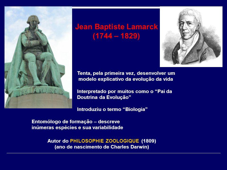 Jean Baptiste Lamarck (1744 – 1829) Tenta, pela primeira vez, desenvolver um modelo explicativo da evolução da vida Interpretado por muitos como o Pai