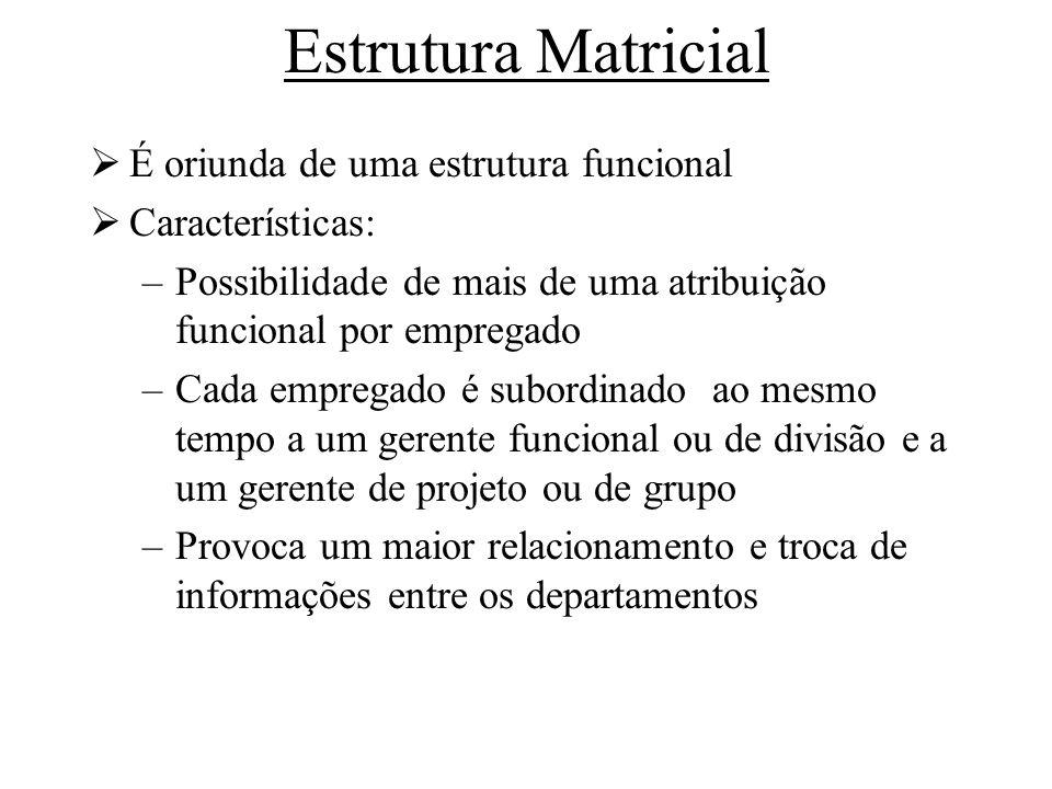 Estrutura Matricial É oriunda de uma estrutura funcional Características: –Possibilidade de mais de uma atribuição funcional por empregado –Cada empre