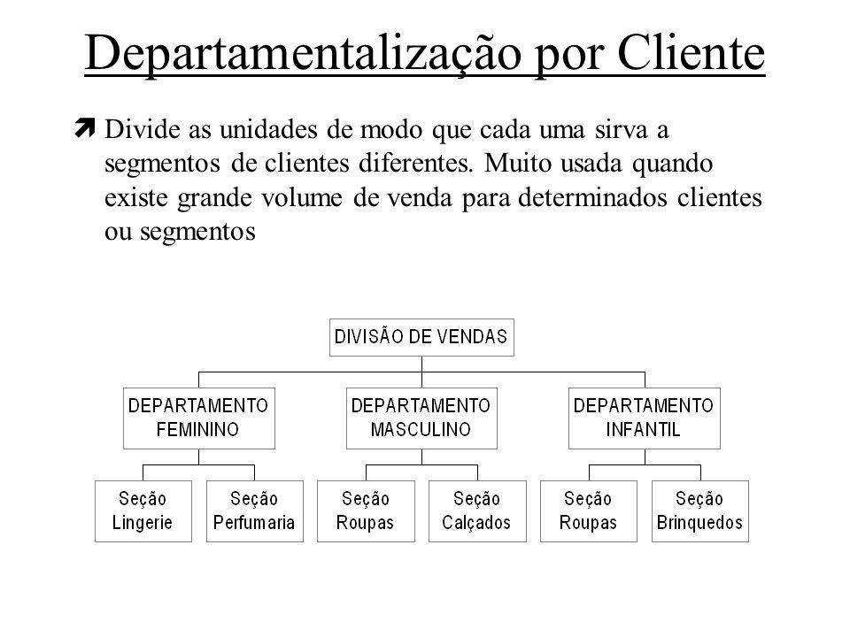 Departamentalização por Cliente ìDivide as unidades de modo que cada uma sirva a segmentos de clientes diferentes. Muito usada quando existe grande vo