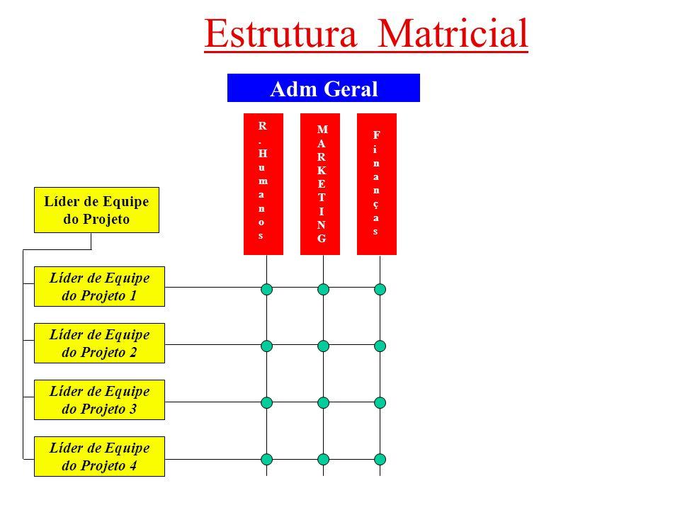 Estrutura Matricial Adm Geral R.HumanosR.Humanos FinançasFinanças MARKETINGMARKETING Líder de Equipe do Projeto Líder de Equipe do Projeto 1 Líder de