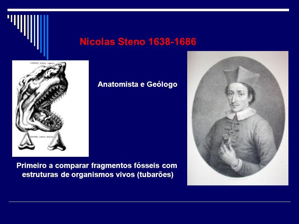 Nicolas Steno 1638-1686 Anatomista e Geólogo Primeiro a comparar fragmentos fósseis com estruturas de organismos vivos (tubarões)