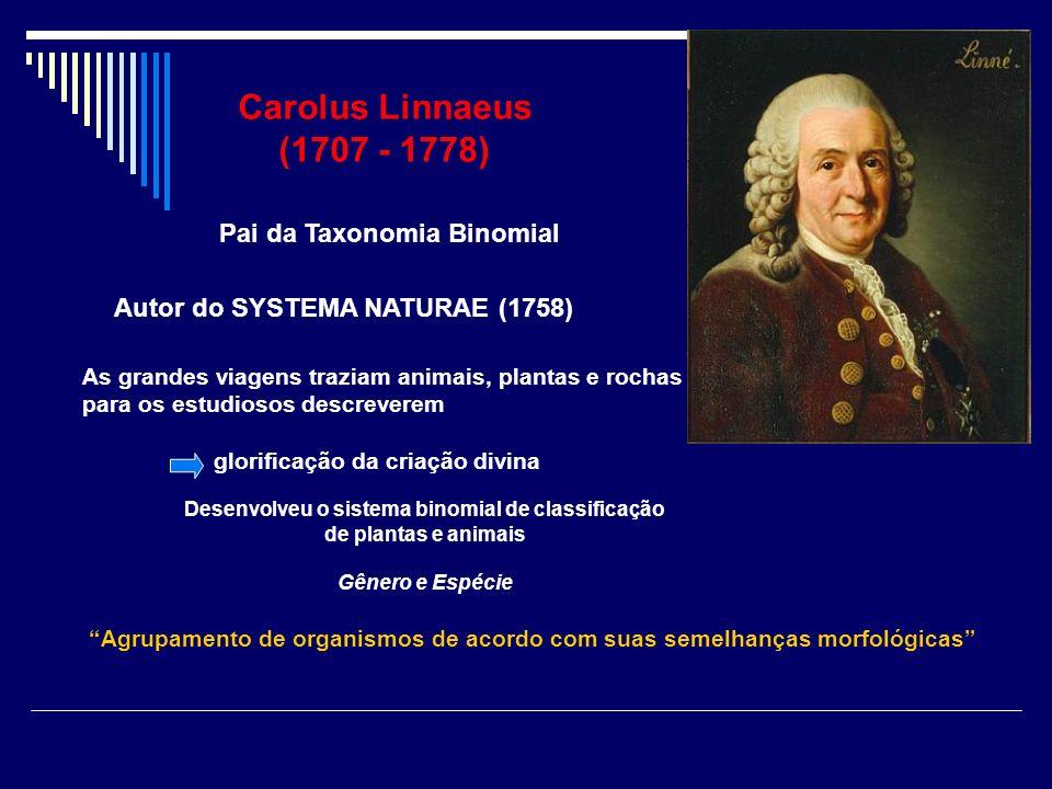 Carolus Linnaeus (1707 - 1778) Pai da Taxonomia Binomial Autor do SYSTEMA NATURAE (1758) Desenvolveu o sistema binomial de classificação de plantas e