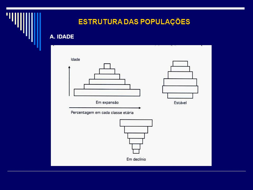 ESTRUTURA DAS POPULAÇÕES A. IDADE