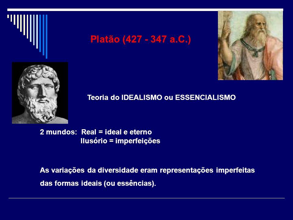 2 mundos:Real = ideal e eterno Ilusório = imperfeições As variações da diversidade eram representações imperfeitas das formas ideais (ou essências). P
