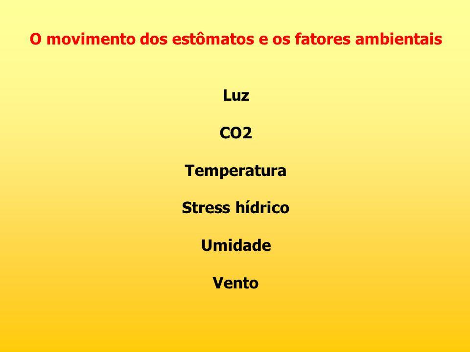 O movimento dos estômatos e os fatores ambientais Luz CO2 Temperatura Stress hídrico Umidade Vento