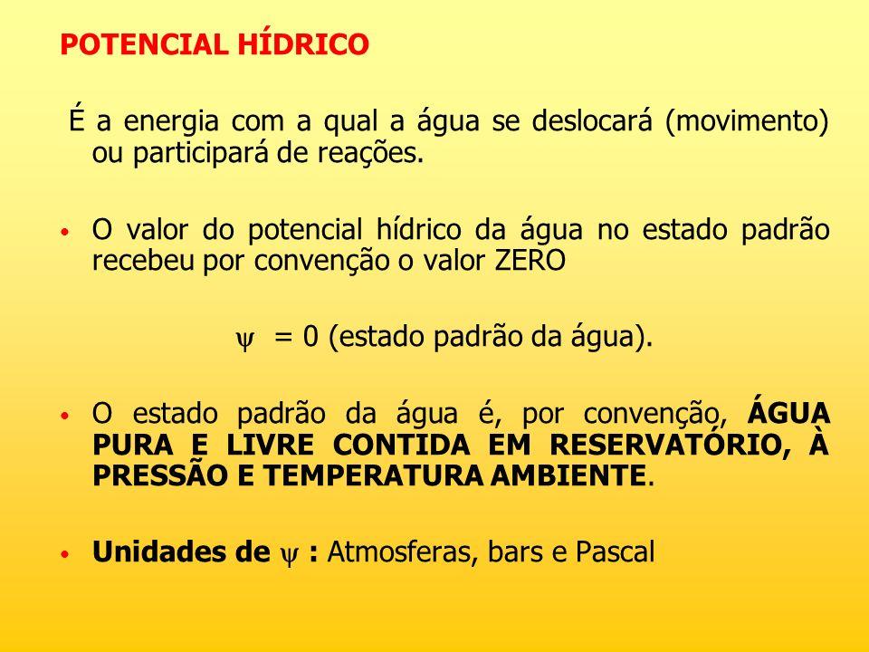 POTENCIAL HÍDRICO É a energia com a qual a água se deslocará (movimento) ou participará de reações. O valor do potencial hídrico da água no estado pad