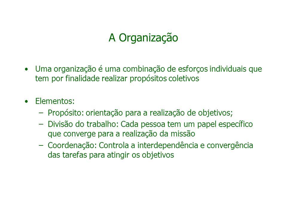 A Organização Uma organização é uma combinação de esforços individuais que tem por finalidade realizar propósitos coletivos Elementos: –Propósito: ori