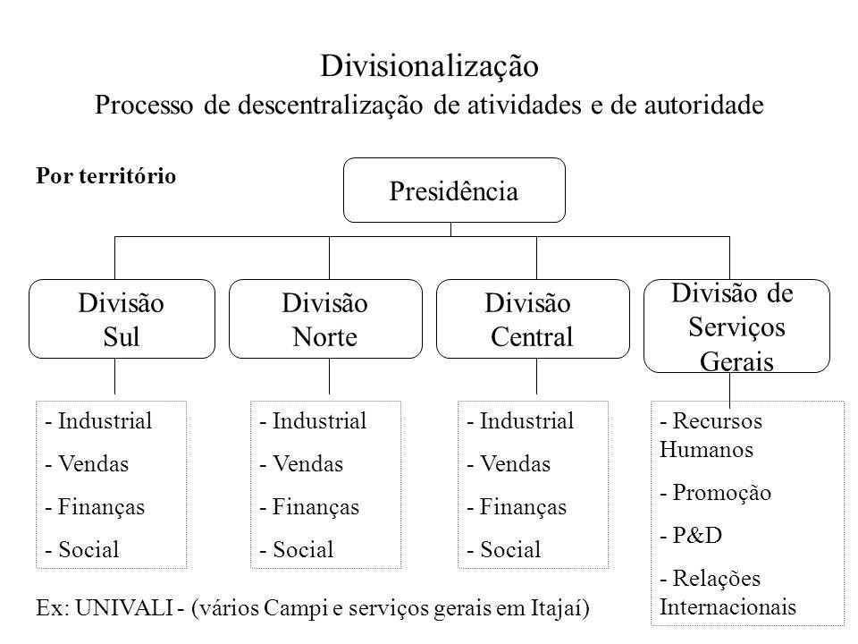 Divisionalização Processo de descentralização de atividades e de autoridade Presidência Divisão Sul Divisão Norte Divisão Central Divisão de Serviços
