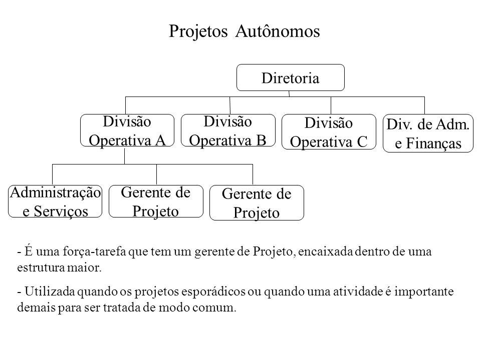 Projetos Autônomos Diretoria Divisão Operativa B Divisão Operativa C Div. de Adm. e Finanças Divisão Operativa A Gerente de Projeto Gerente de Projeto