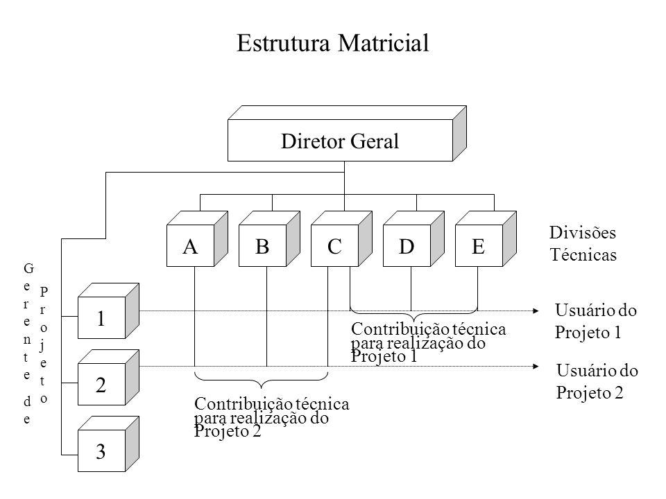 Estrutura Matricial Diretor Geral ABCDE 1 2 3 Divisões Técnicas GerentedeGerentede ProjetoProjeto Contribuição técnica para realização do Projeto 2 Co
