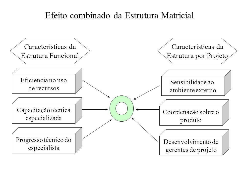 Efeito combinado da Estrutura Matricial Eficiência no uso de recursos Sensibilidade ao ambiente externo Capacitação técnica especializada Progresso té