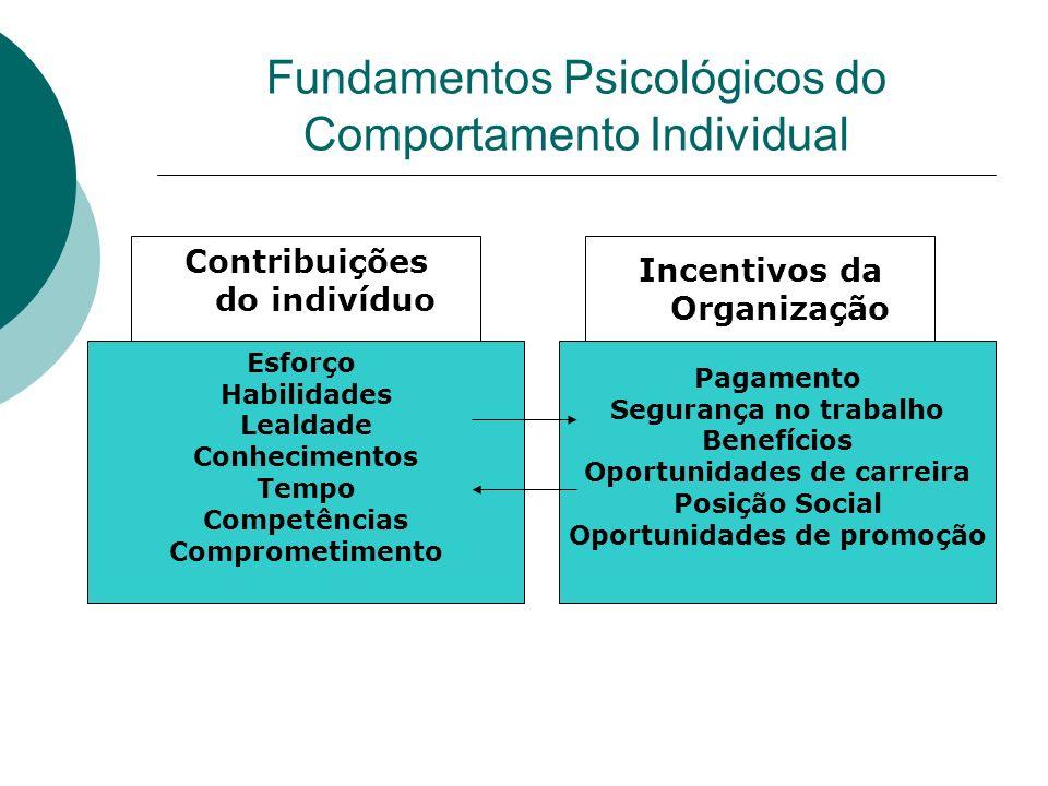 Contribuições do indivíduo Esforço Habilidades Lealdade Conhecimentos Tempo Competências Comprometimento Incentivos da Organização Pagamento Segurança