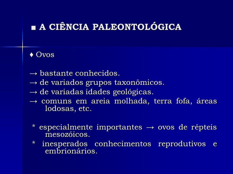 A CIÊNCIA PALEONTOLÓGICA A CIÊNCIA PALEONTOLÓGICA Ovos Ovos bastante conhecidos. bastante conhecidos. de variados grupos taxonômicos. de variados grup