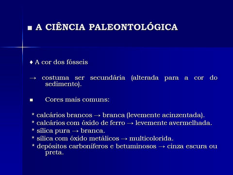 A CIÊNCIA PALEONTOLÓGICA A CIÊNCIA PALEONTOLÓGICA A cor dos fósseis A cor dos fósseis costuma ser secundária (alterada para a cor do sedimento). costu