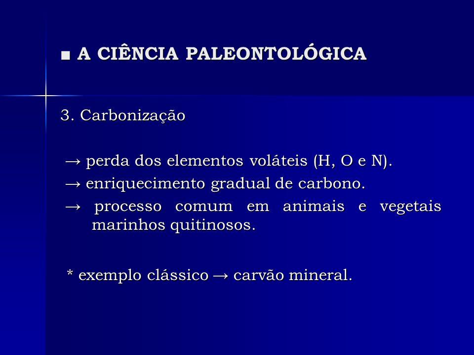 A CIÊNCIA PALEONTOLÓGICA A CIÊNCIA PALEONTOLÓGICA 3. Carbonização perda dos elementos voláteis (H, O e N). perda dos elementos voláteis (H, O e N). en