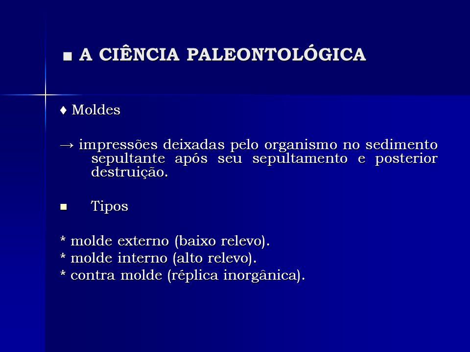A CIÊNCIA PALEONTOLÓGICA A CIÊNCIA PALEONTOLÓGICA Moldes Moldes impressões deixadas pelo organismo no sedimento sepultante após seu sepultamento e posterior destruição.