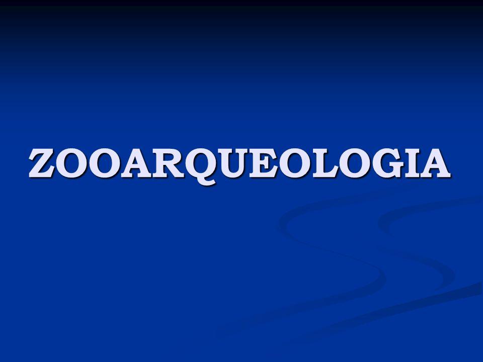 Zooarqueologia Zooarqueologia Estudo da apropriação, interação e integração de populações humanas com o meio ambiente e com os animais.