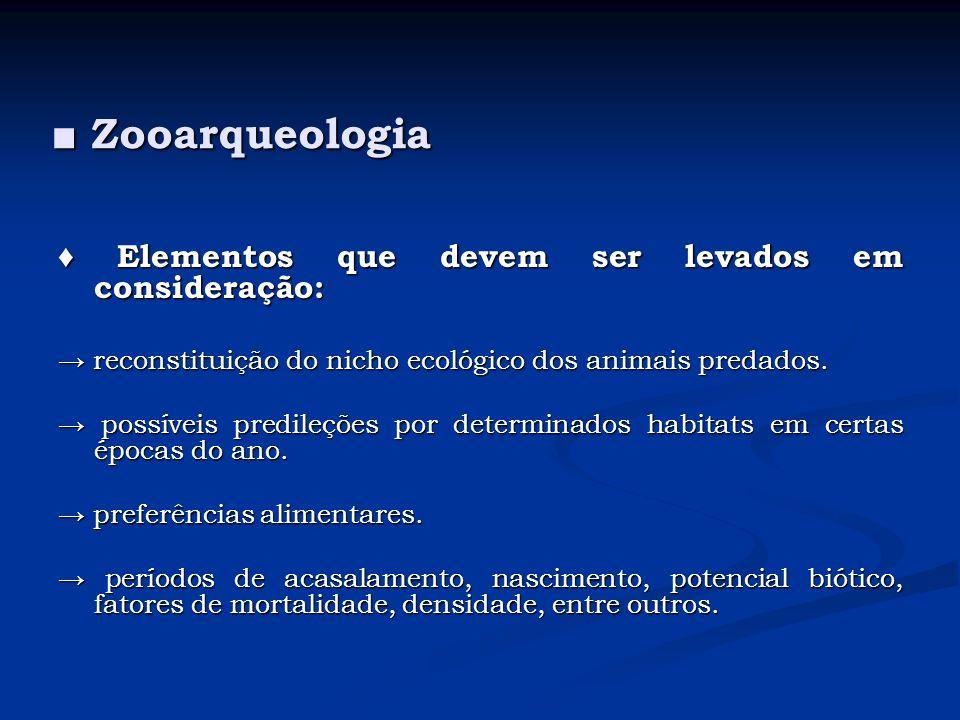 Zooarqueologia Zooarqueologia Elementos que devem ser levados em consideração: Elementos que devem ser levados em consideração: tamanho e peso do animal abatido.