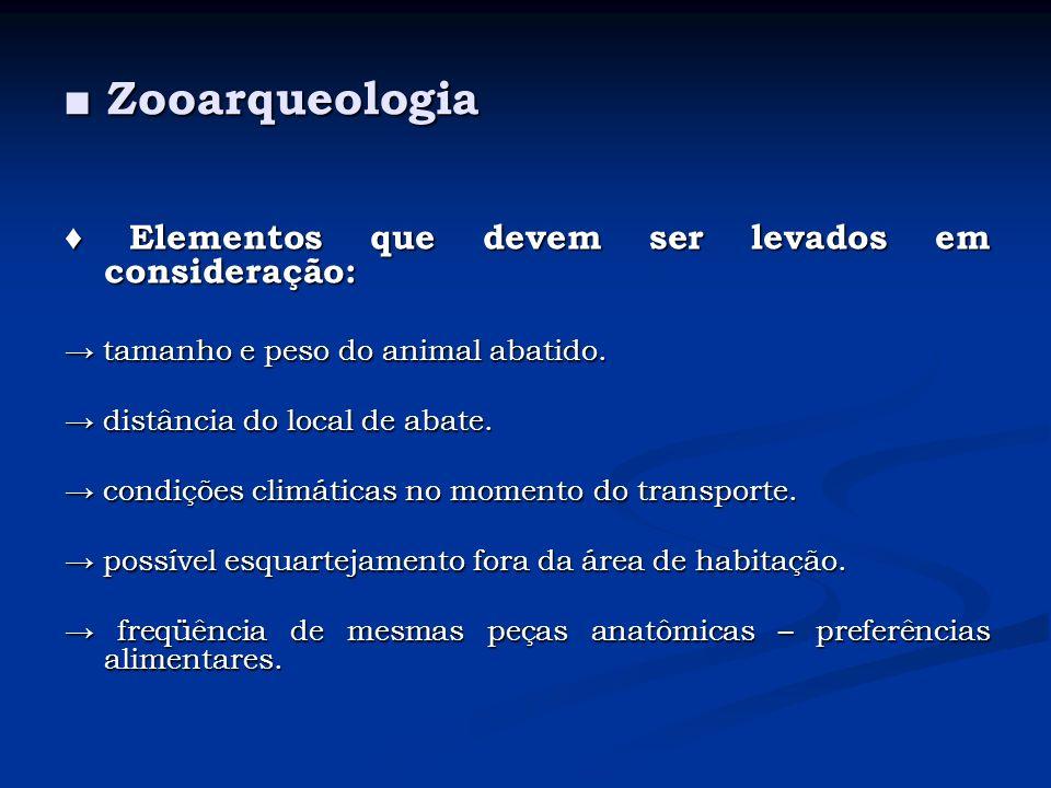 Zooarqueologia Zooarqueologia Elementos que devem ser levados em consideração: Elementos que devem ser levados em consideração: tamanho e peso do anim