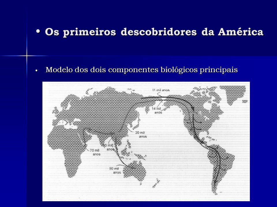 Os primeiros descobridores da América Os primeiros descobridores da América Modelo dos dois componentes biológicos principais Modelo dos dois componen