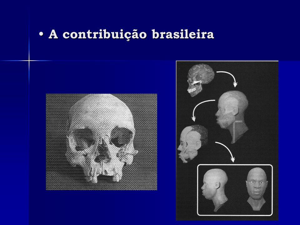 A contribuição brasileira A contribuição brasileira