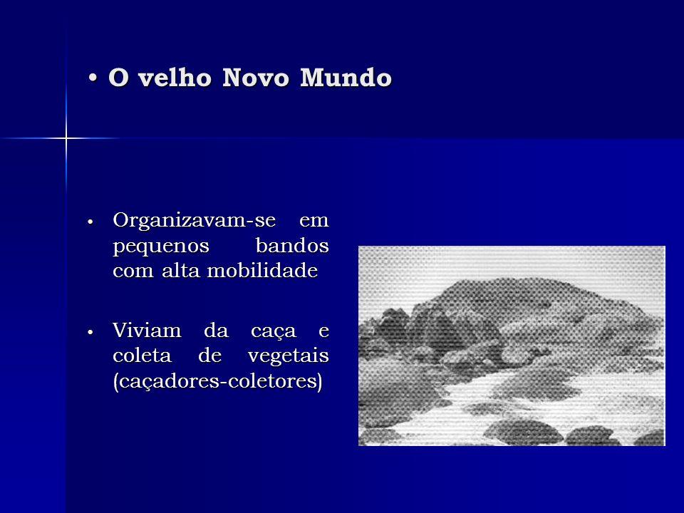 O velho Novo Mundo O velho Novo Mundo Organizavam-se em pequenos bandos com alta mobilidade Organizavam-se em pequenos bandos com alta mobilidade Vivi