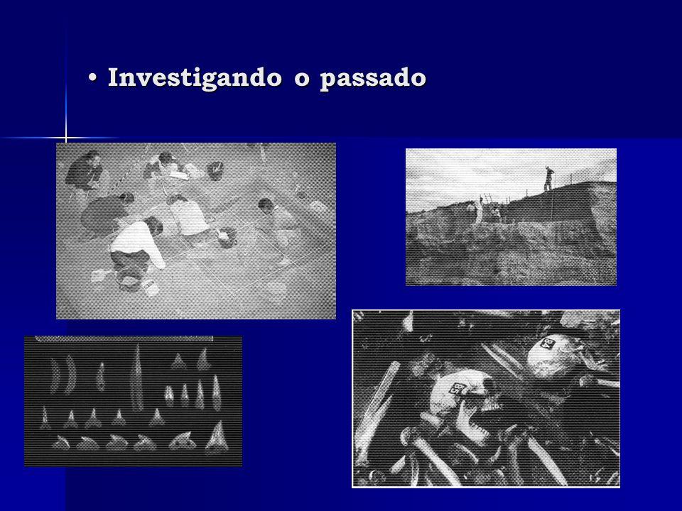 Investigando o passado Investigando o passado