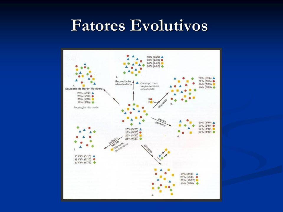 Fatores Evolutivos