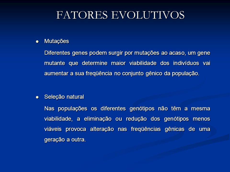 FATORES EVOLUTIVOS Mutações Mutações Diferentes genes podem surgir por mutações ao acaso, um gene mutante que determine maior viabilidade dos indivídu