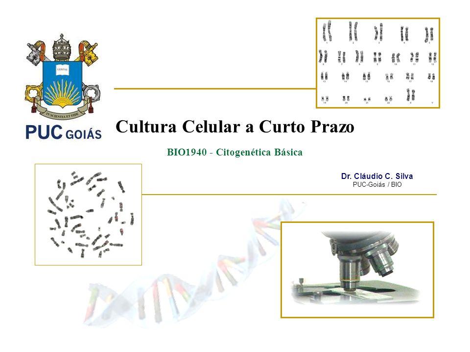 Cultura Celular a Curto Prazo BIO1940 - Citogenética Básica Dr. Cláudio C. Silva PUC-Goiás / BIO