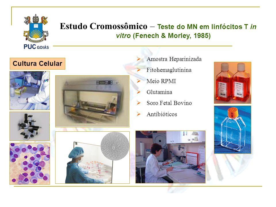 Cultura Celular Amostra Heparinizada Fitohemaglutinina Meio RPMI Glutamina Soro Fetal Bovino Antibióticos Estudo Cromossômico – Teste do MN em linfóci