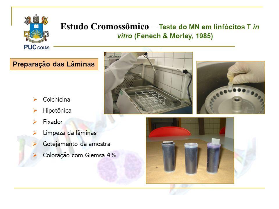 Preparação das Lâminas Colchicina Hipotônica Fixador Limpeza da lâminas Gotejamento da amostra Coloração com Giemsa 4% Estudo Cromossômico – Teste do
