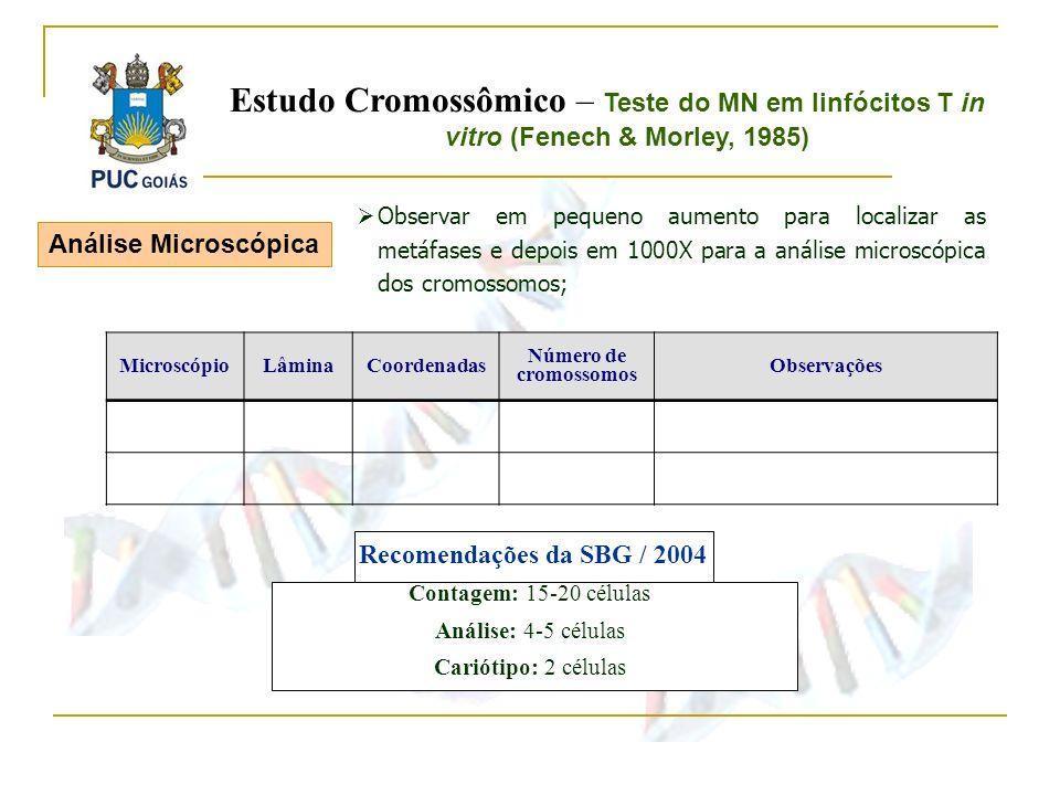 Observar em pequeno aumento para localizar as metáfases e depois em 1000X para a análise microscópica dos cromossomos; MicroscópioLâminaCoordenadas Nú