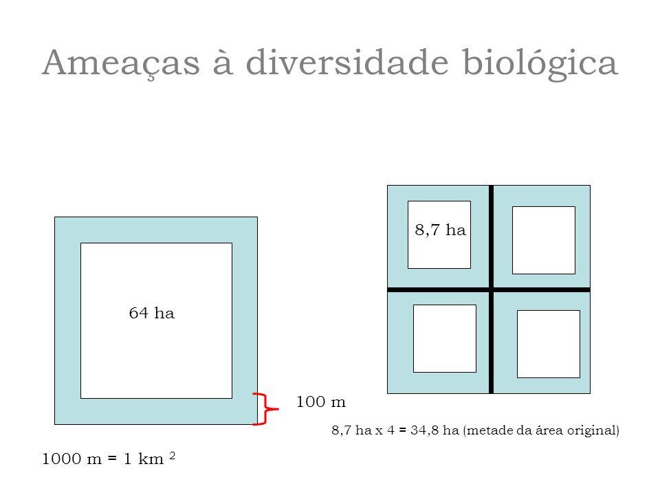 64 ha 1000 m = 1 km 2 100 m 8,7 ha 8,7 ha x 4 = 34,8 ha (metade da área original)