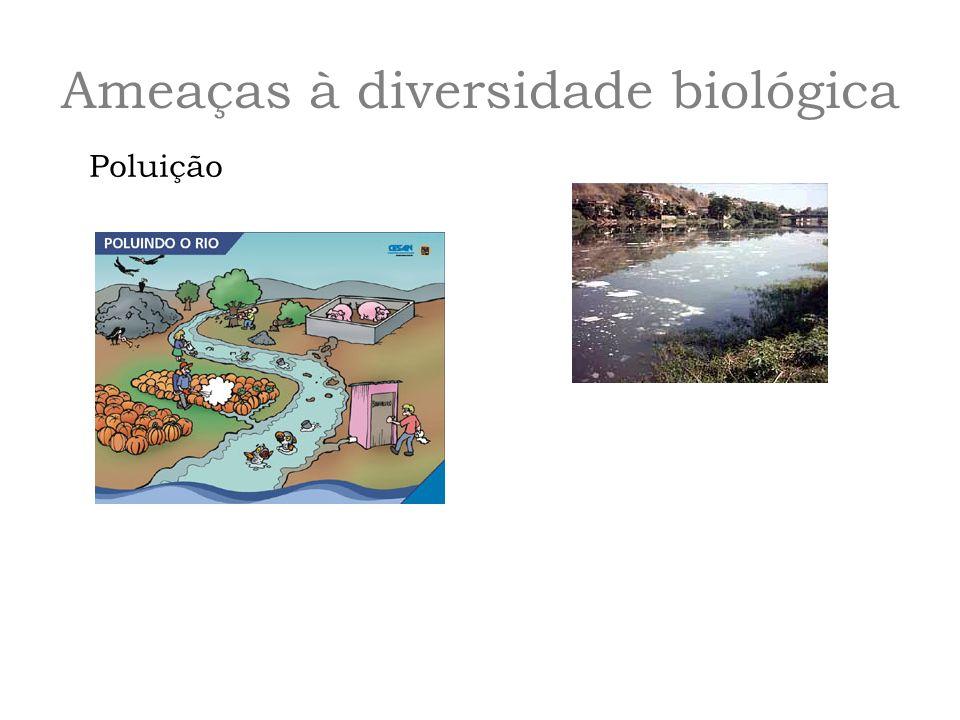 Ameaças à diversidade biológica Poluição