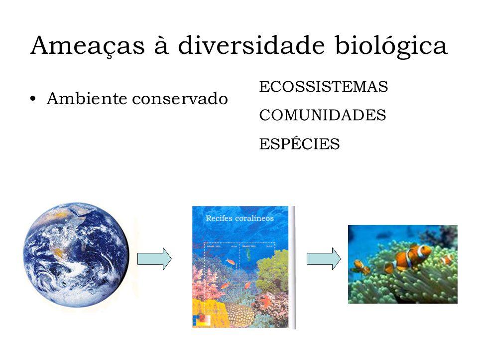 Ameaças à diversidade biológica Ambiente conservado ECOSSISTEMAS COMUNIDADES ESPÉCIES