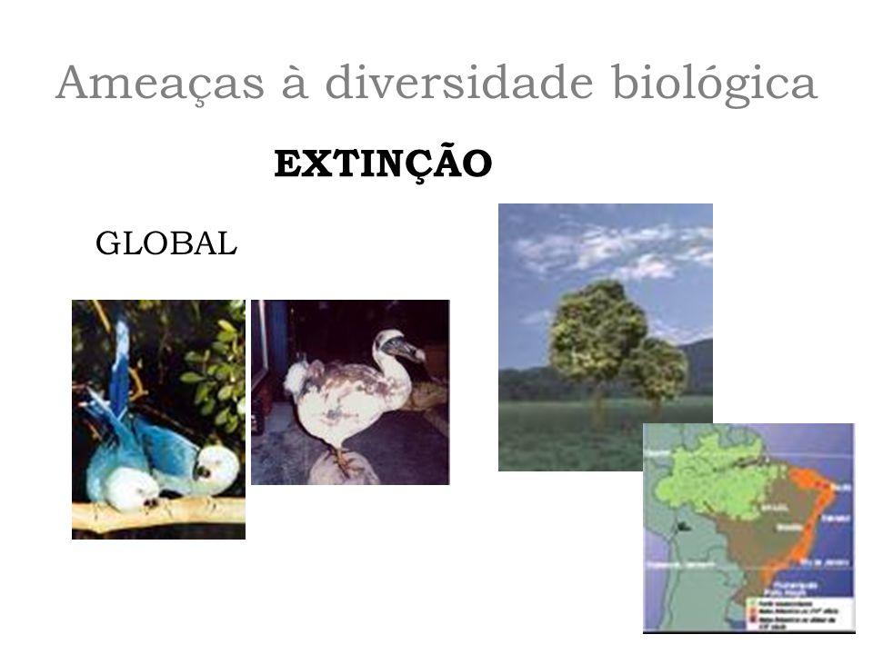 Ameaças à diversidade biológica EXTINÇÃO GLOBAL