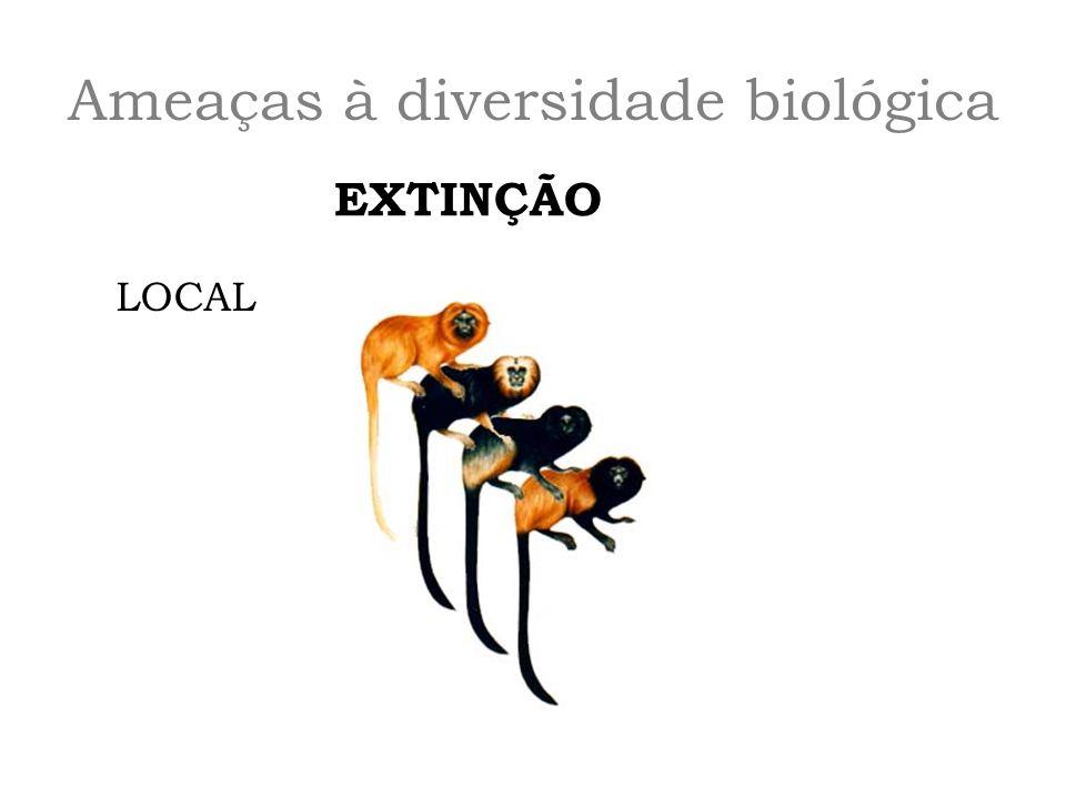 Ameaças à diversidade biológica EXTINÇÃO LOCAL