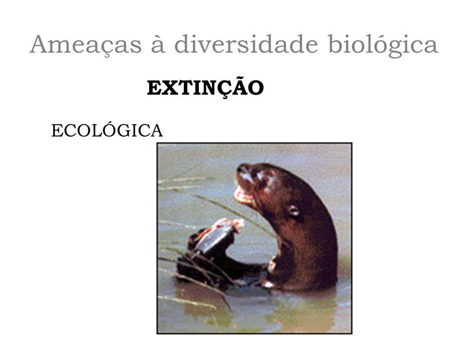 Ameaças à diversidade biológica EXTINÇÃO ECOLÓGICA